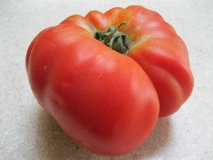 Heirloom tomato - brandywine