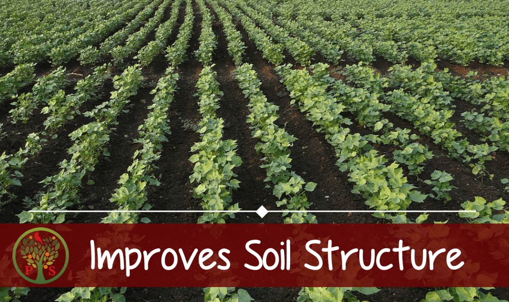 Composting improves soil structure