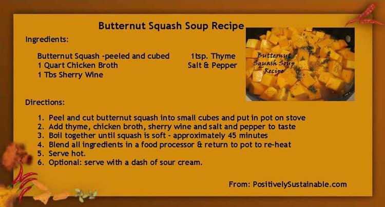 Butternut soup recipes