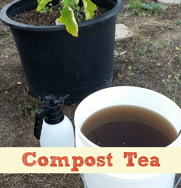 Compost tea brewing