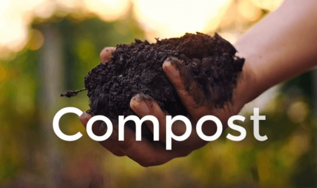 compost - best organic fertilizer