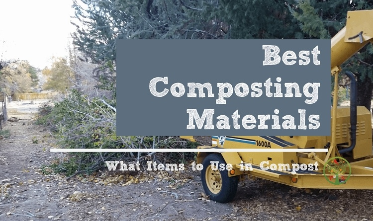 what items can I compost