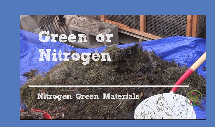 What materials can I compost - list of green composting materials