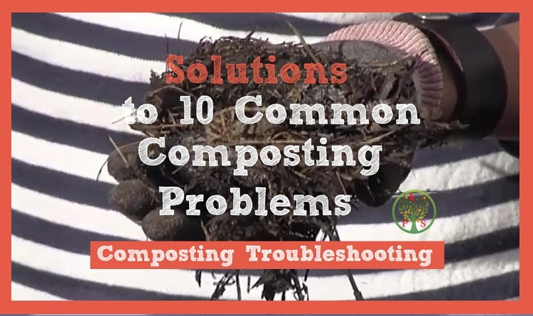 solutions to problems when composting